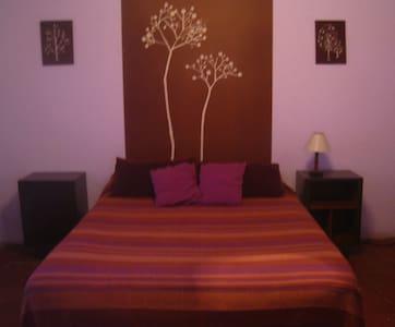 Hostel Casa Arbol- Double+Shrd Bath - Cafayate - Bed & Breakfast