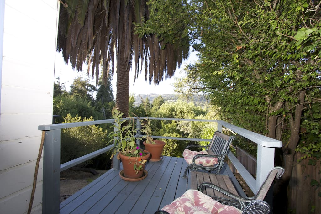 Mill Valley Jewel