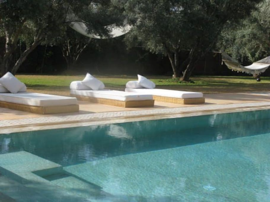 pool beds & hamac
