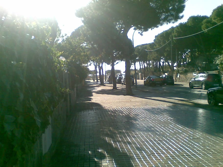 Nuestra calle - our street