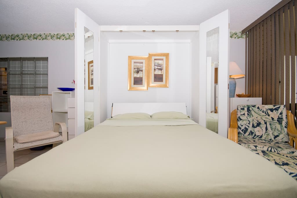 Murphy Bed, Queen Size (front view)