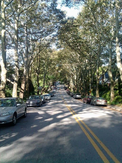 """The neighborhood is well established with families who have been here for generations. The street was voted """"prettiest"""" in Baltimore a few years ago. It"""