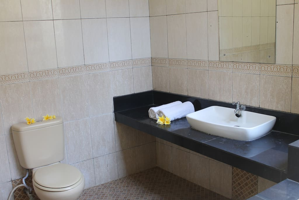 Big Bathroom with Hot water and bathtub and Fresh towel provided everyday