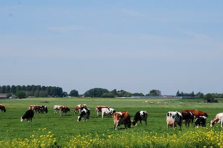 Country side farmlogies 1/logies - Alphen aan den Rijn