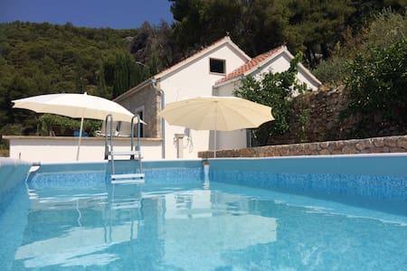 Home in vineyard with sea view/pool - villa Nina - Rumah