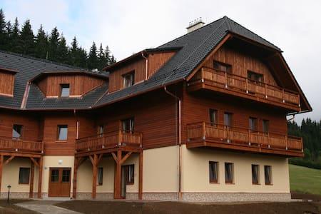 Apartmán na Zadově - Šumava - Stachy - Appartamento