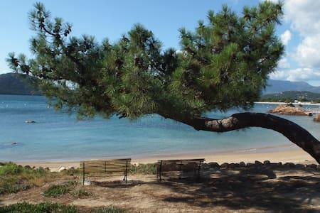Mini villa climatisée, plage de Cala Rossa à pied. - Lecci - House