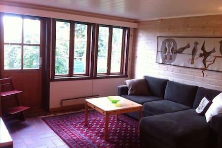 Fin leilighet sentralt i Lillesand - Lillesand