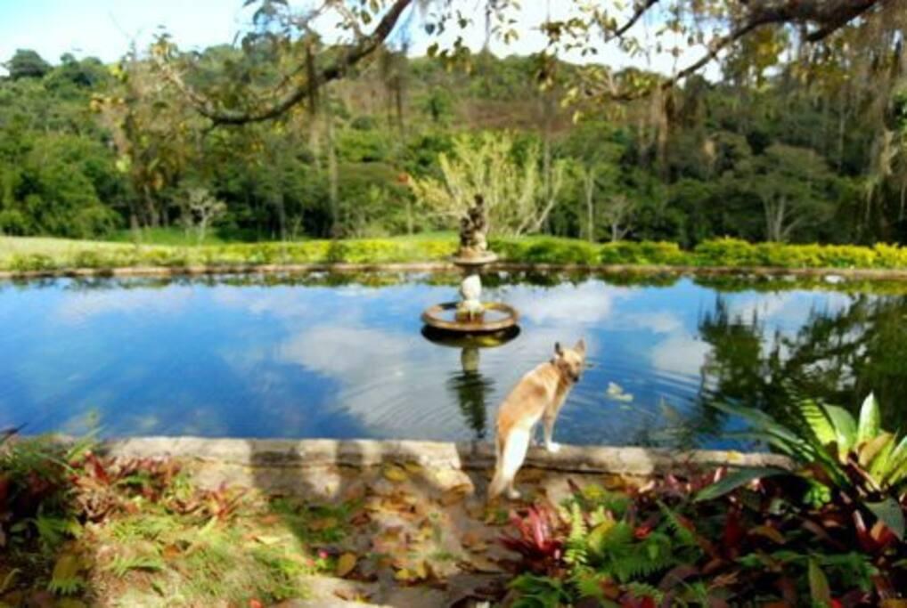 Lago que compõe o patrimônio histórico