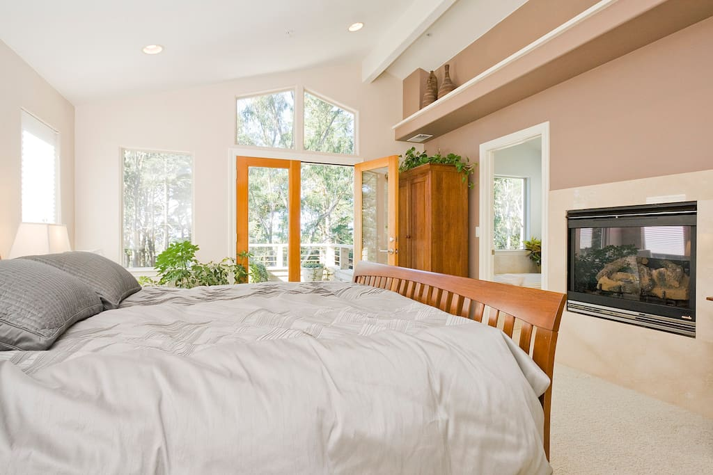 Master Suite - with small outdoor patio / french doors and gas fireplace.