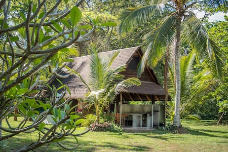 Surf Cabin in the Jungle