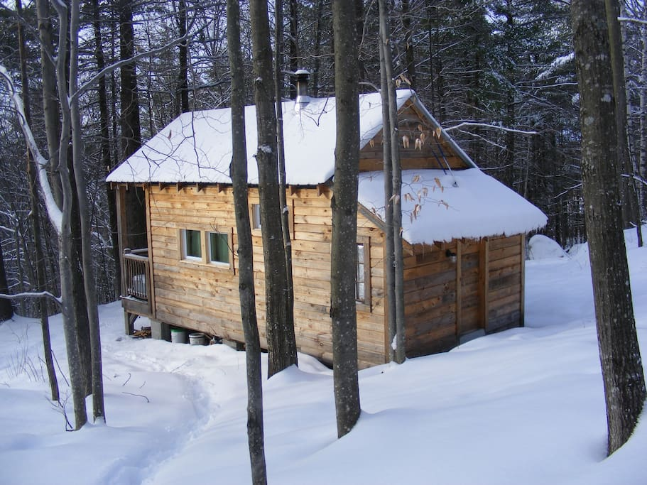 Robin's Nest Eco-Cabin in Maine