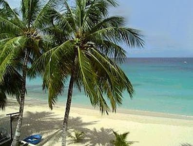 BARBADOS - Walk to Beaches & Shops - Douglas - Apartamento