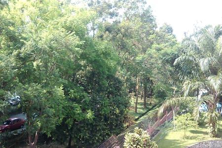 The Designer's Tree House (single) - Kuala Lumpur - Reihenhaus