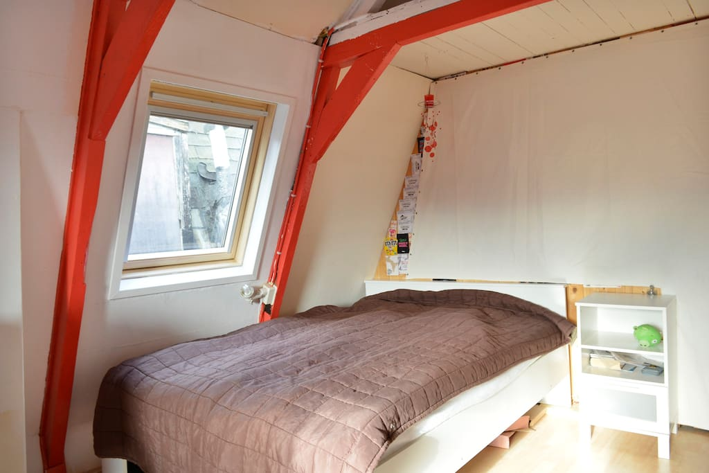 Nice Attic Room Near Centre Lofts For Rent In Amsterdam