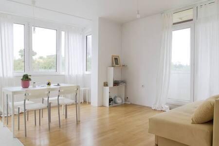 Practical & cozy united big flat - Sofya