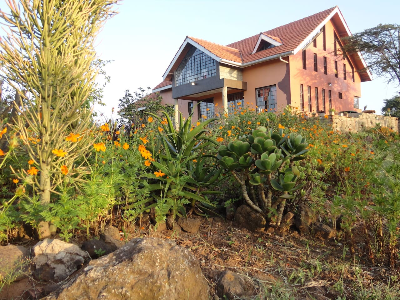 Par Kwe  is a rustic Afro Chic five bedroomed house in a Savannah country garden. We hear the laugh of the hyenas and sometimes a hippo comes to our water hole.