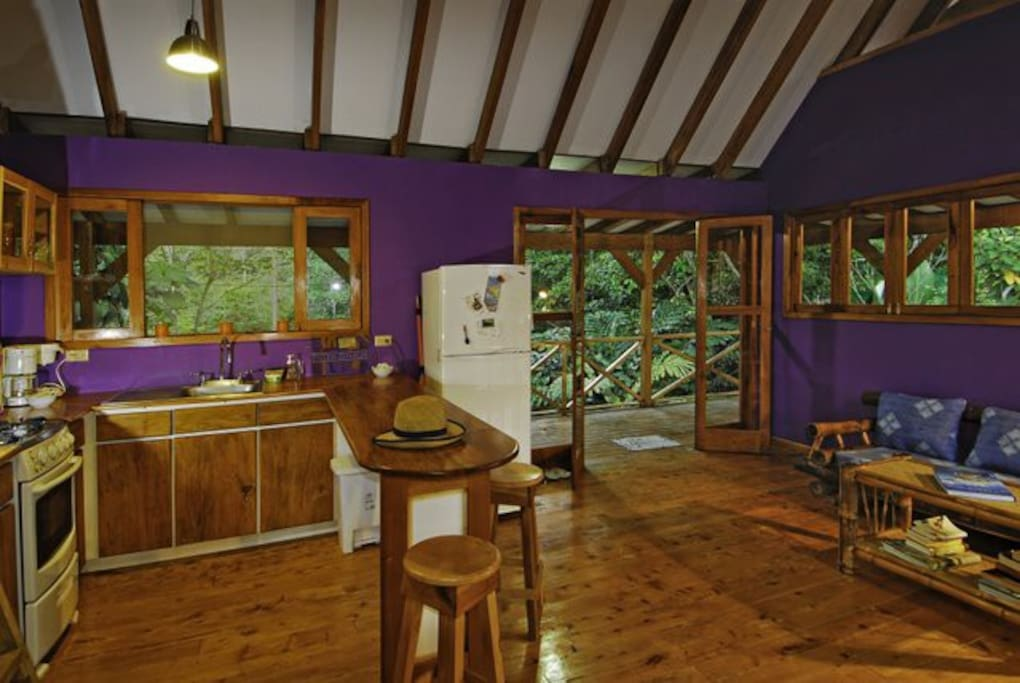 living room/kitchen with a view to the river/toucans