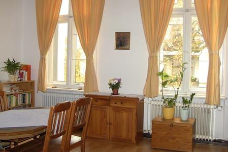 Schönes sonniges Zimmer in Berlin-Steglitz - Berlin - Apartament