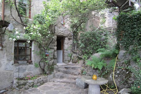A flat in the Cevennes, Lozere - Vialas - Loft