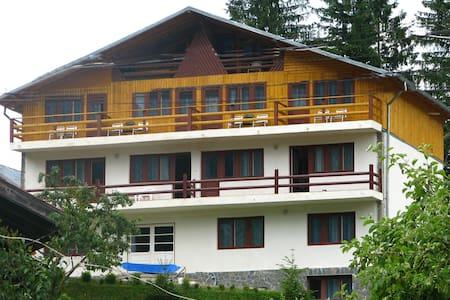 Montaniard Villa near Bucegi Mt
