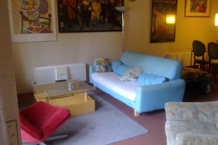 Spacious Groundfloor city apartment