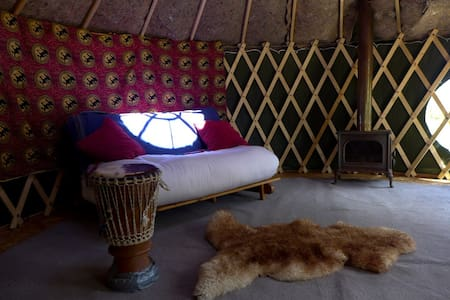 Beautiful Yurt - Yourte