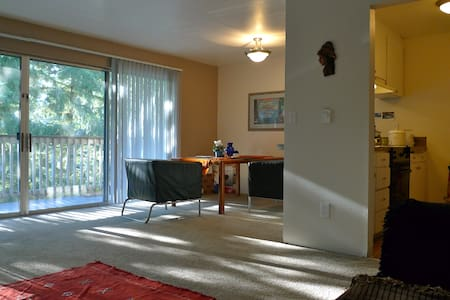 Walking distance to Seatac Airport - Daire