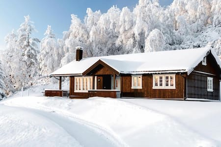 Golsfjellet Vest/Hjartingstølen - Cabin