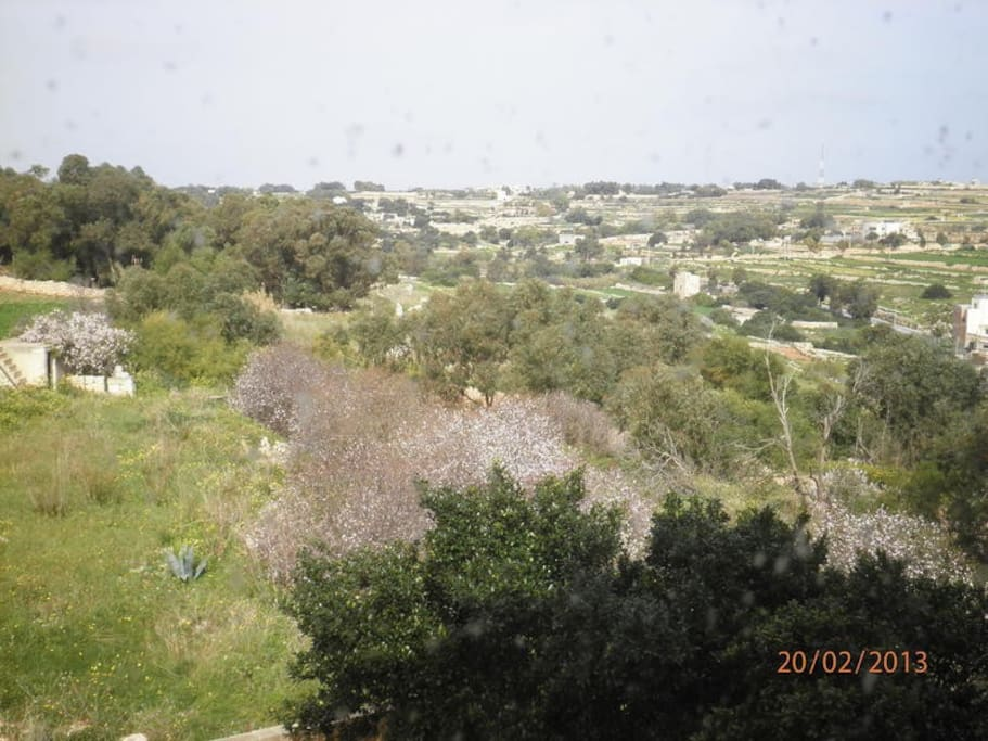 View Outside Living Room and Kitchen (Marsascala Valley)