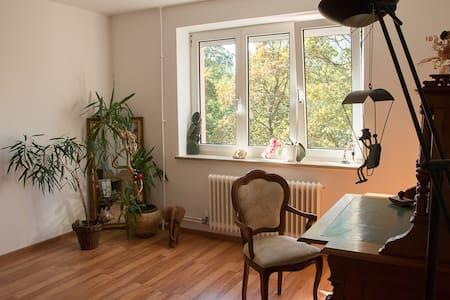 10 Minutes to Oktoberfest - quiet & central room! - Munich - Appartement