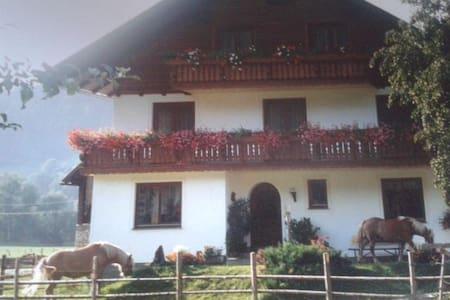 Organic farm stay in Styria. - Bed & Breakfast