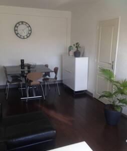 Appartement 2 pièces de 45m2 - Appartamento