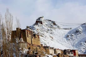 Picture of Travellers House, Leh. INDIA