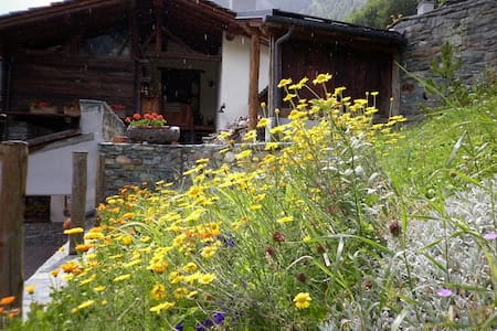 B&B a Valtournenche Valle d'Aosta - Paquier - Bed & Breakfast