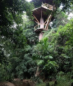 Jungle Treehouse 4 Nature Lovers - Domek na drzewie