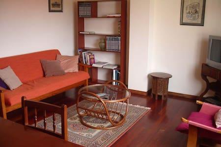 Spacious apartment in Cambados - Leilighet