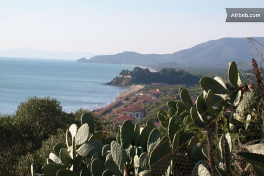 Flats 30 m from beach Castiglione