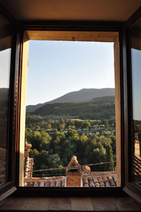 Vista sulla montagna /View