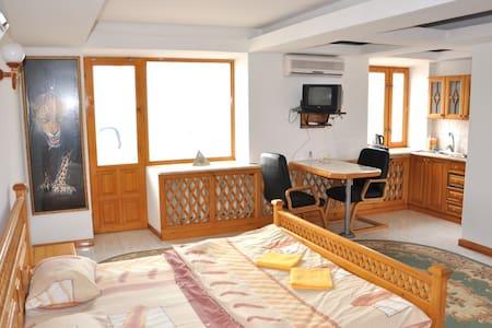 Квартира в центре Луганска - Luhansk - Apartment