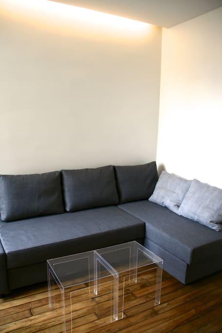 Living room ( convertible sofa bed )