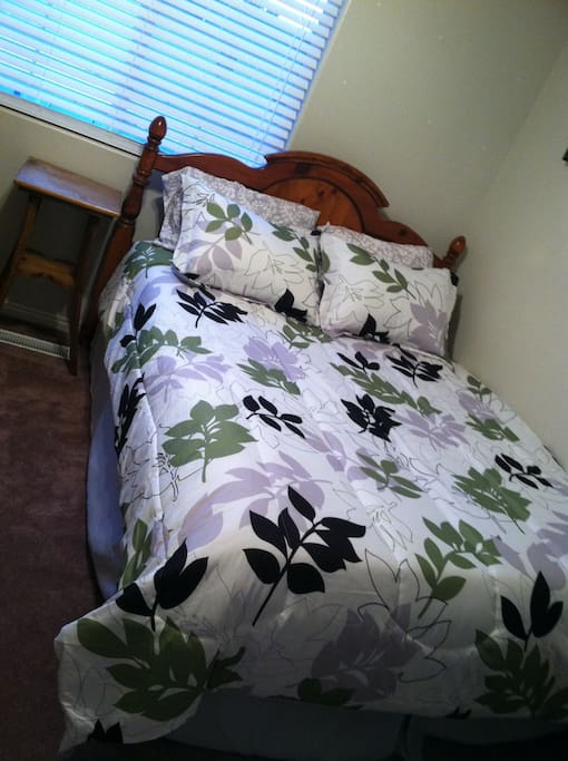 Brand new bed spread. Lots of extra pillows, blankets and towels. 2 air mattresses available as well.