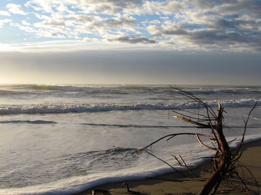 une plage de 15 km