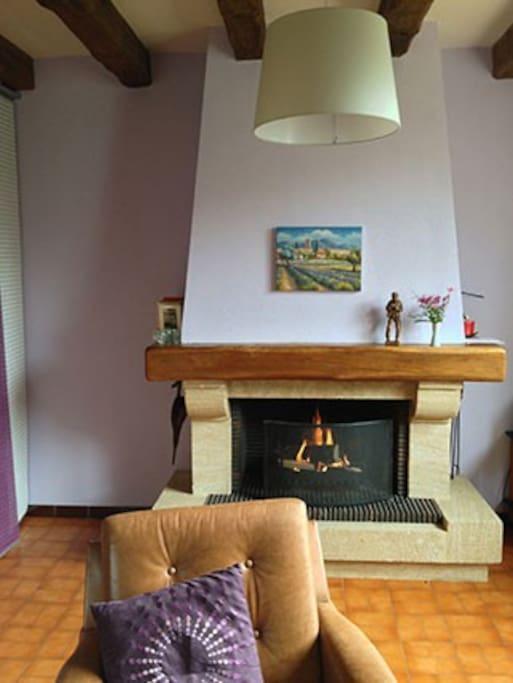 Wohnzimmer: Blick von 3er Ledersofa auf Kamin