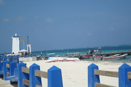 Study in Puerto Morelos, Cancun