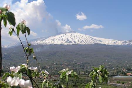 Family Eco Farm Facing Etna&Ocean - Piedimonte Etneo - Apartment
