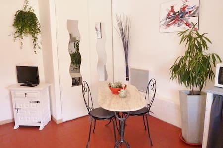 STUDIO TERRASSE en CAMARGUE SAUVAGE - Apartment
