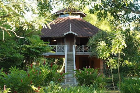 Beautiful treehouse in rainforest