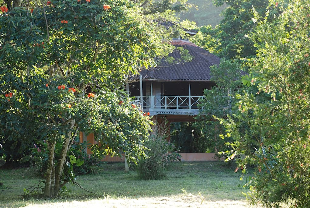 View of house through fruit and flowering trees.