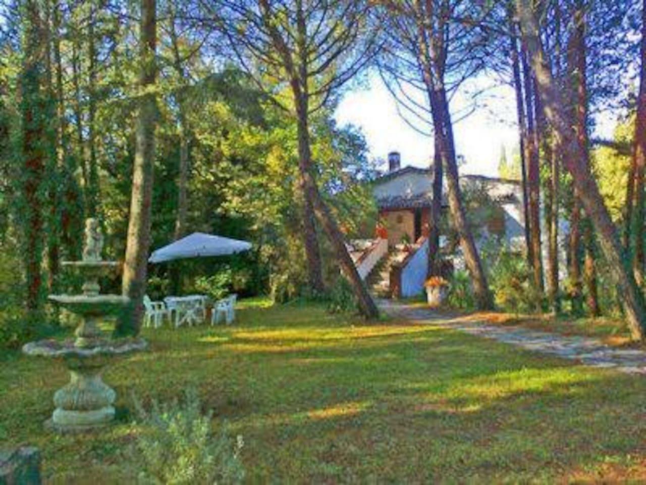 """""""La Tana delle Volpi"""", un' antica casa colonica ristrutturata immersa in un bosco privato e recintato di 3 ettari"""